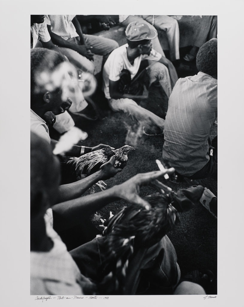 Port-au -Prince, Cock Fight, Haiti, 1988
